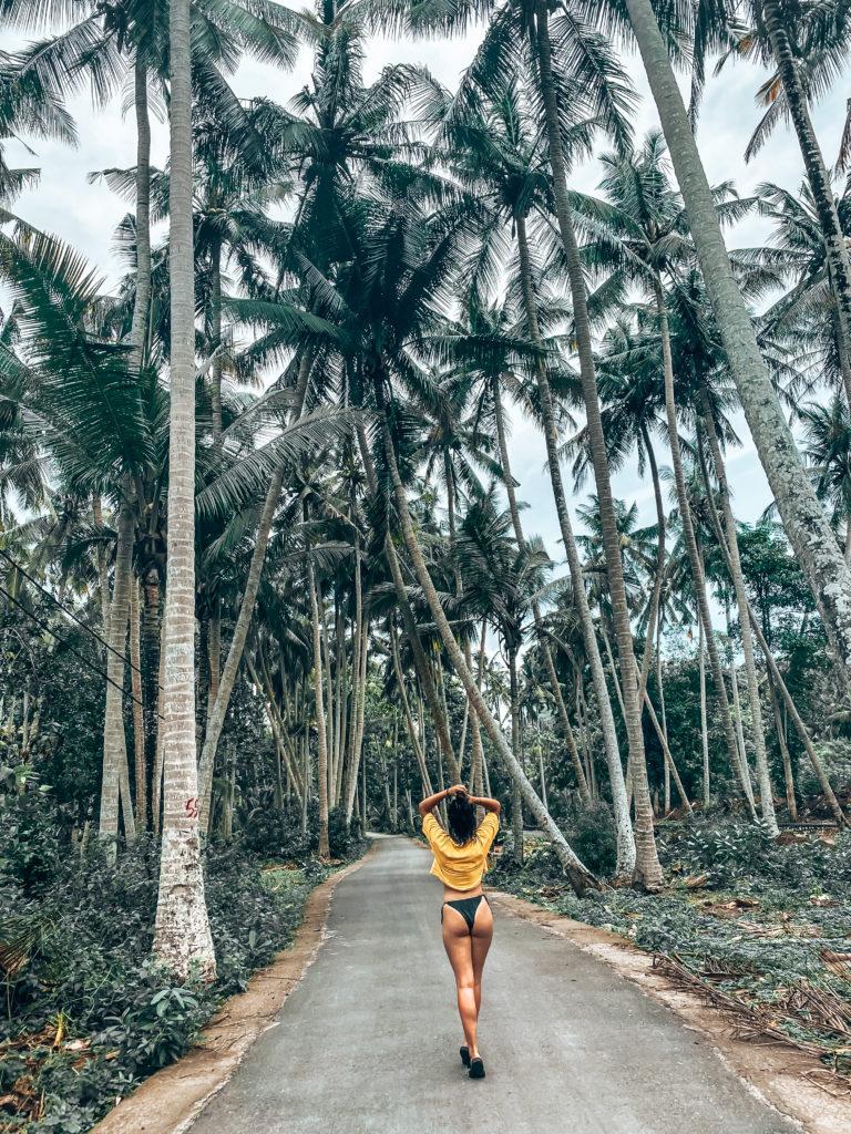Traveling to Bali | d-ravel.com