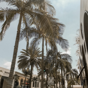 The Do's and Don'ts of Los Angeles | d-ravel.com | D-RAVEL