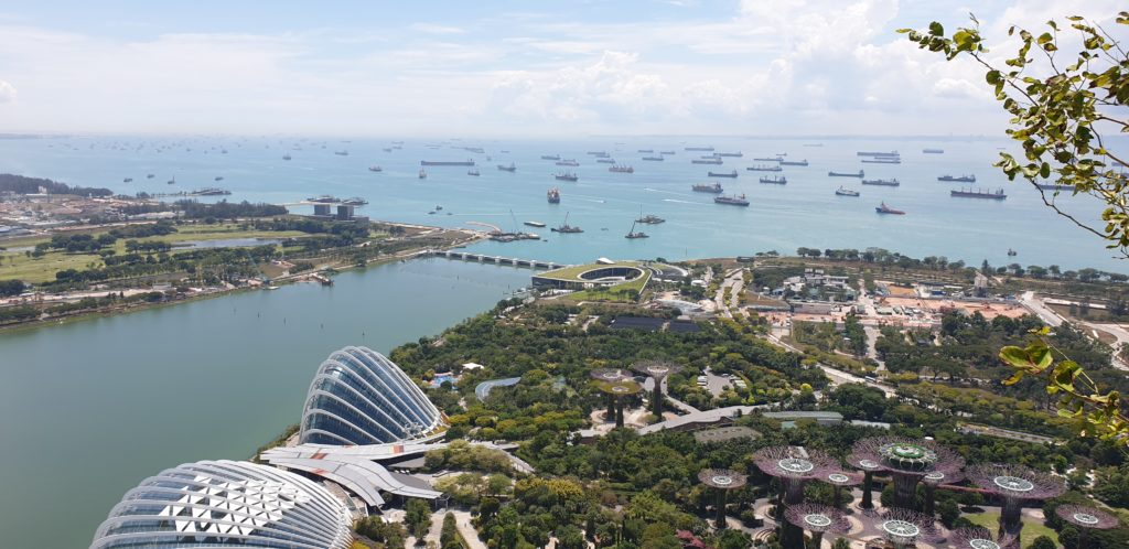 Why You Should Travel to Singapore | d-ravel.com