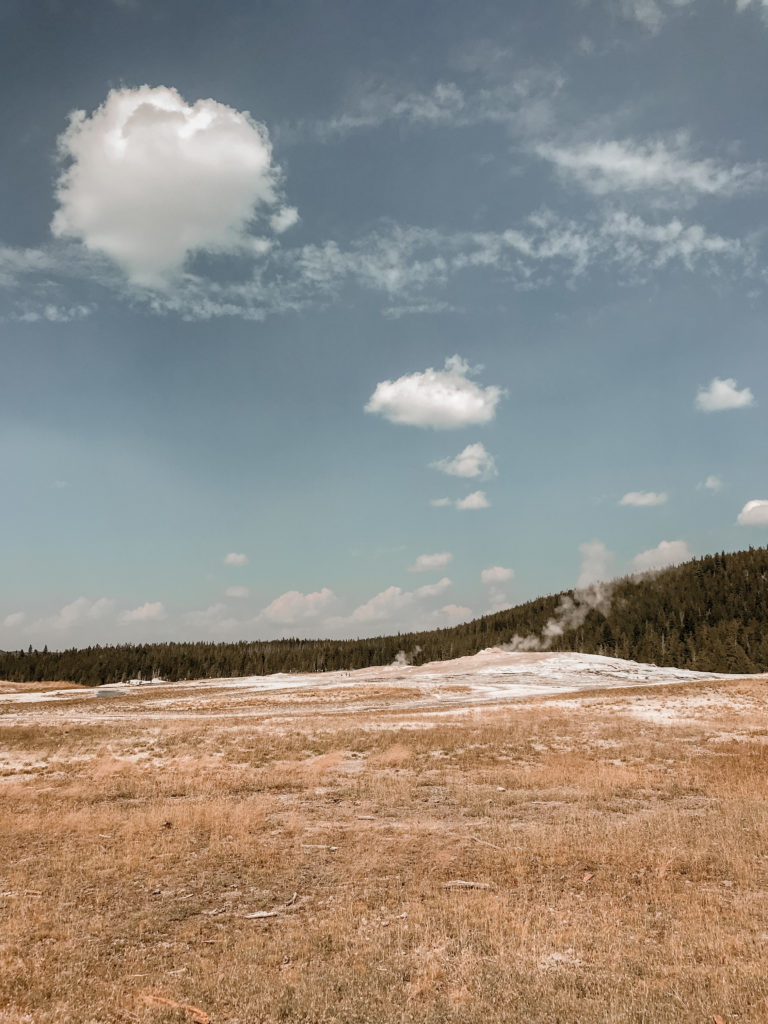 My Experience in Yellowstone National Park | d-ravel.com